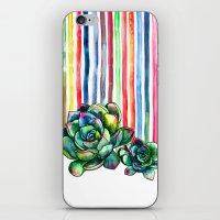 Rainbow Succulents - Pen… iPhone & iPod Skin