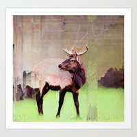 One Stag Art Print