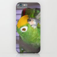 Polly Want A Cracker? iPhone 6 Slim Case