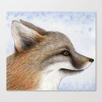 Grey Fox Canvas Print