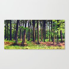 Reveal Canvas Print