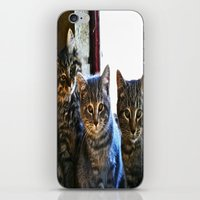 What Are You Looking At? x 3 iPhone & iPod Skin