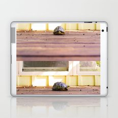 Mugshot Turtle Laptop & iPad Skin