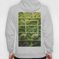 Music of the Fiddleheads Hoody