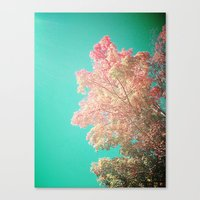 So Long September v1 Canvas Print