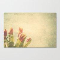 Tulipanes. Canvas Print