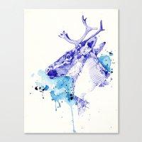 Ciel Boréal (Étude Caribou I) Canvas Print