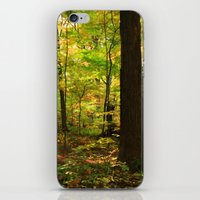 Maple Forest (Painterly Style) iPhone & iPod Skin