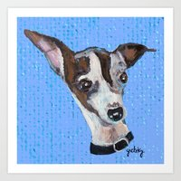 Mia The Italian Greyhoun… Art Print