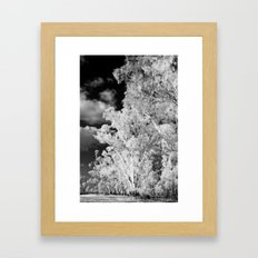 The Path Less Travelled Framed Art Print