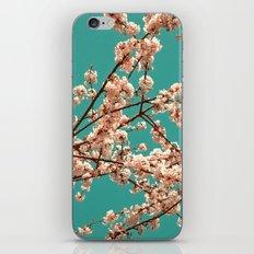 spring tree XVII iPhone & iPod Skin