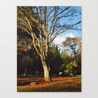 Canvas Print featuring End of Autumn by Vorona Photography