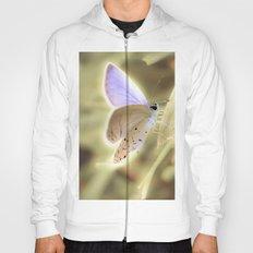 Purple Butterfly Hoody