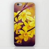 Like A Dream II iPhone & iPod Skin