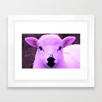 Animals Of The Rainbow Lamb Framed Art Print