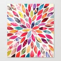 Color Flower Burst Canvas Print
