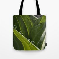 New Hosta Growth Tote Bag