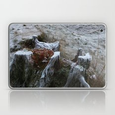Stump & Frost Laptop & iPad Skin