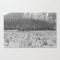 Cutting Through Trees Canvas Print
