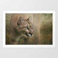 Puma profile Art Print