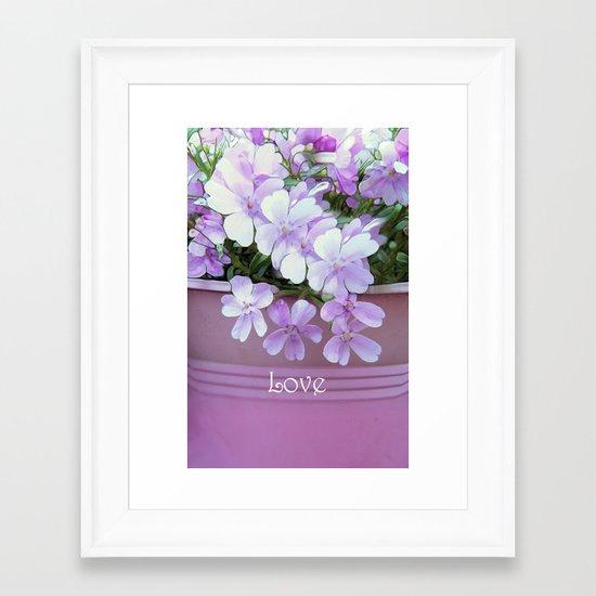 Phlox Love Framed Art Print