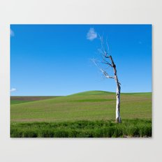 Some don't make it to spring Canvas Print