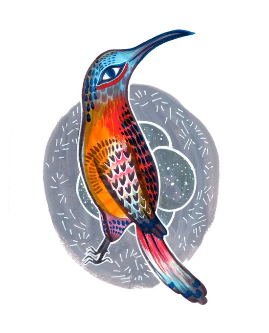 Hummingbird and Nest Canvas Print