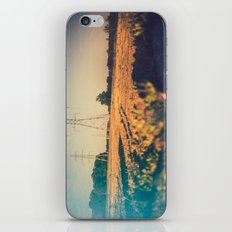 Stems and gears, oh how the daisies bloom iPhone & iPod Skin