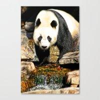 Wang Wang Canvas Print