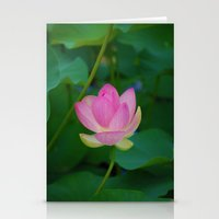 Lotus Blossom Flower 28 Stationery Cards