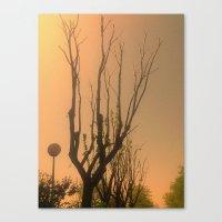 Spiritual trees Canvas Print