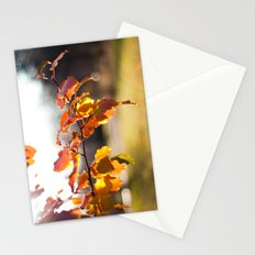 Embers III Stationery Cards