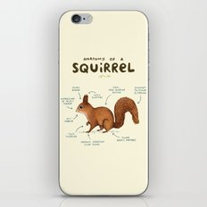 Anatomy of a Squirrel iPhone & iPod Skin