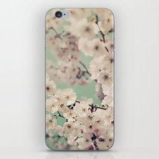 Spring Daydream iPhone & iPod Skin