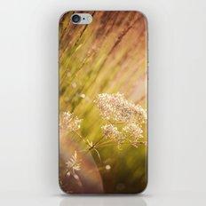 Jeweled Afternoon iPhone & iPod Skin