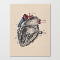 My Heart Beats For You Canvas Print