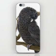 Glossy Black Cockatoo iPhone & iPod Skin