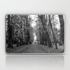 Leafy Walk Laptop & iPad Skin