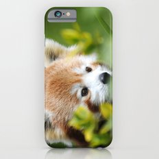 Red Panda 4 iPhone 6 Slim Case