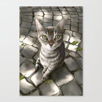 A Cat That I Once Knew Canvas Print