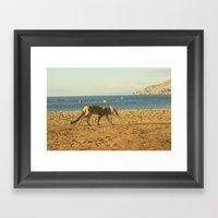 Fox On The Beach Framed Art Print