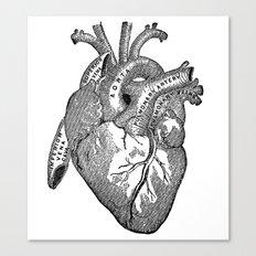 Vintage Anatomy Heart Canvas Print
