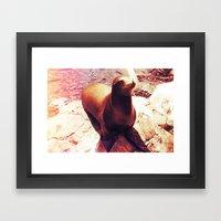 Seal Isn't A Man Framed Art Print