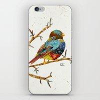 Twilight Bird 2 iPhone & iPod Skin