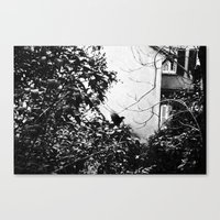 EARLY MORNING, A MESSAGE FOR YOU. Canvas Print