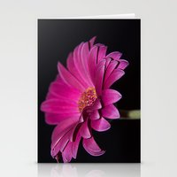 Pink Gerbera Stationery Cards