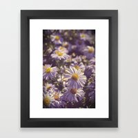 Summer End Framed Art Print