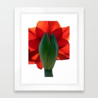SUBLIMINALLY OBVIOUS Framed Art Print