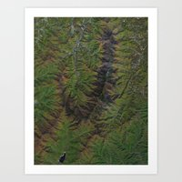 Blue Ridge Mountains Nor… Art Print