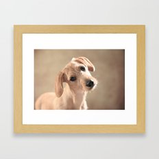 Dog puppy Framed Art Print